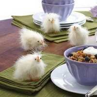 feather easter chicks.jpg